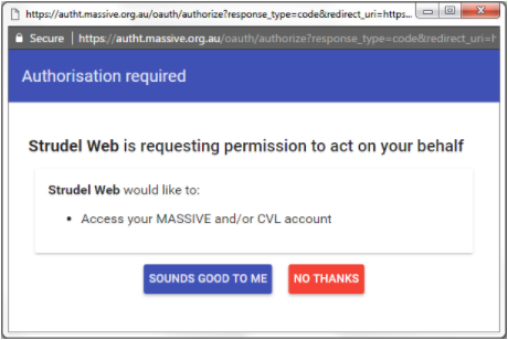 Screenshot of Strudel web Authorisation required dialog box